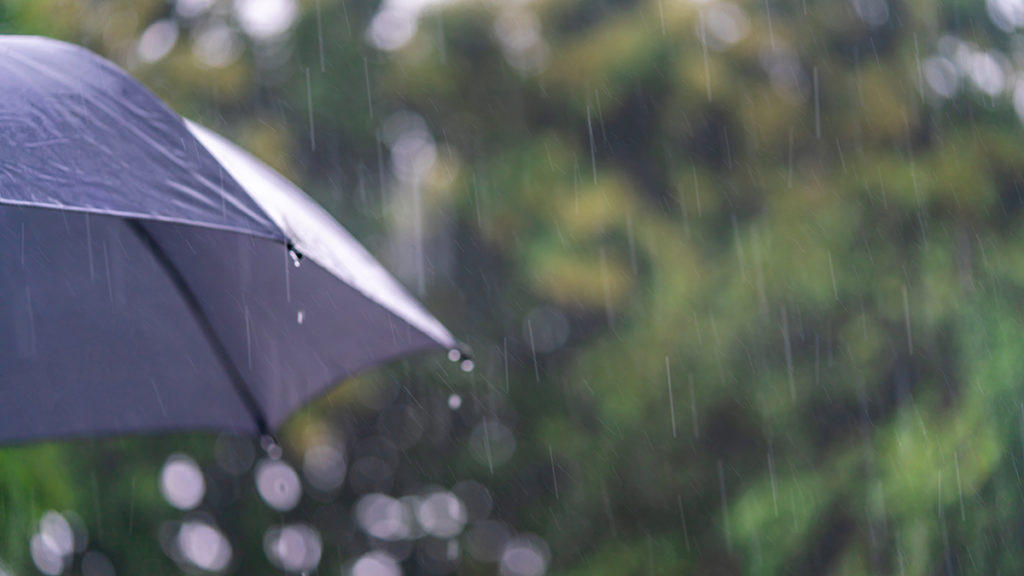 rainy season gambia